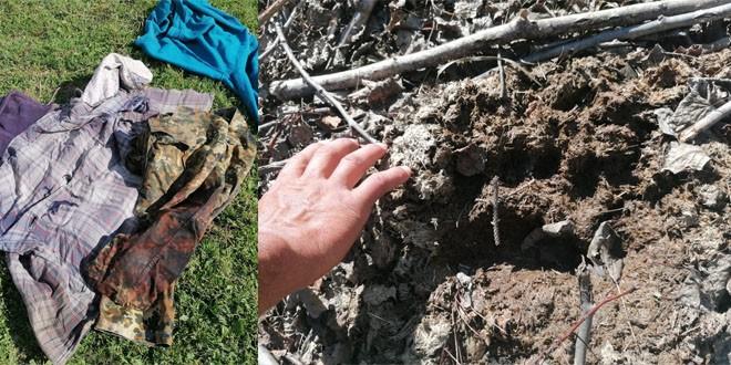 Păstor atacat şi rănit grav de un urs pe raza comunei Voşlăbeni