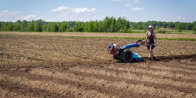 Trei beneficii ale utilizării  unui motocultor în grădina sau livadă